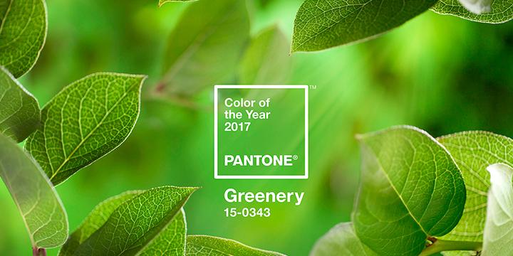 verde folhagem pantone