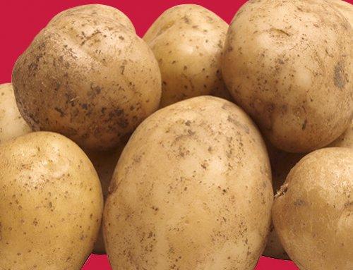 A batata pode ser uma aliada em dietas?