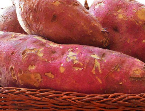 3 benefícios da batata-doce para a saúde