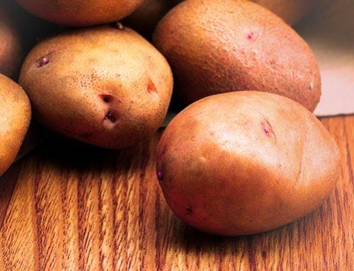 4 alimentos saudáveis que todo mundo deve ter em casa