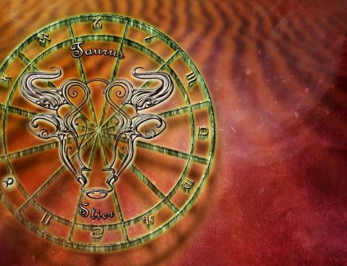Maio: o mês das taurinas